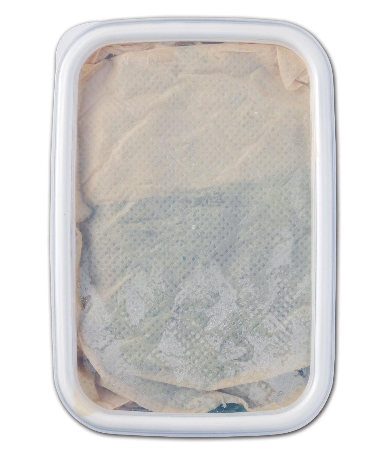 葉っぱを冷蔵保存02